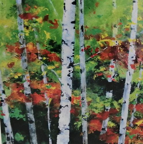 'Piercing Birches 2'