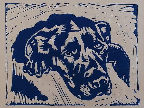 Labrador 1 - blue