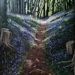 A Walk Through the Woods