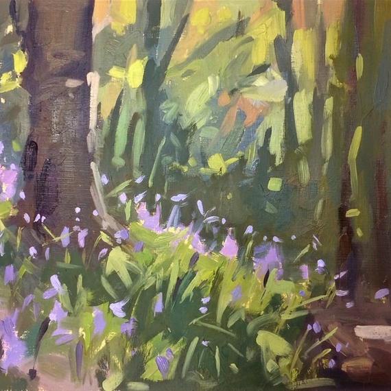Sunlit Slope of Bluebells