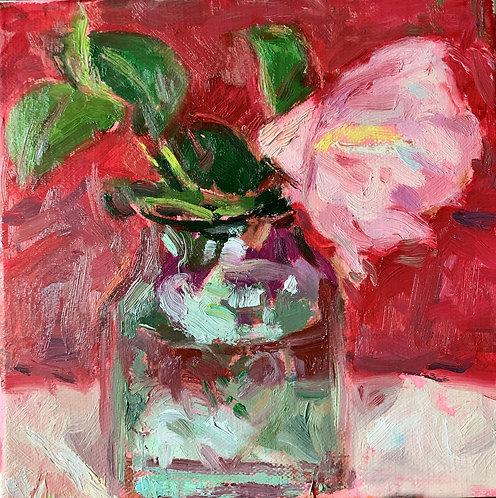 Camellia in Glass Jar