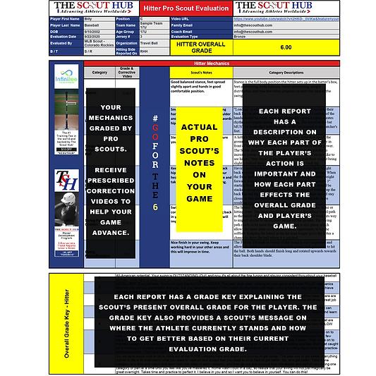 TSH Sample Pitcher Report for Shop-Squar