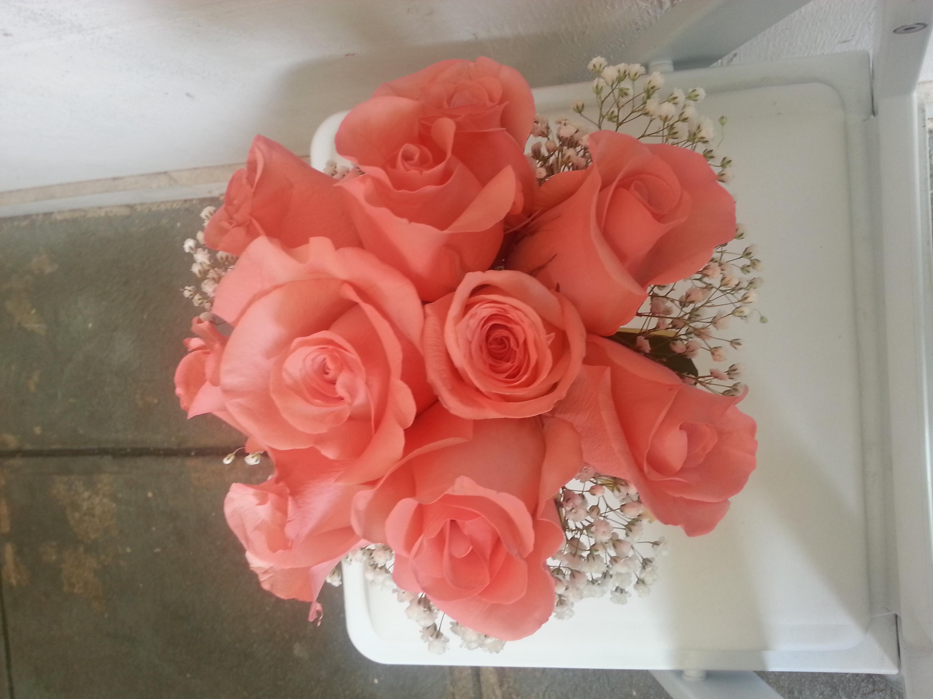 Coral Roses & Star Gazer