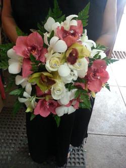 Roses, Orchids & Cymbidium Orchids