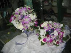 Orchids & Chyrsanthemum