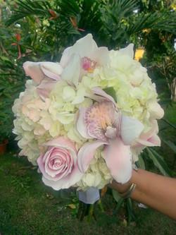 Cymbidium Orchids & Hydrangeas