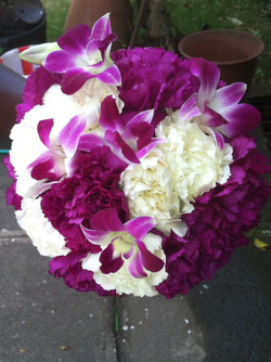 Orchids & Carnations