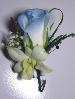 Blue Rose & Orchid