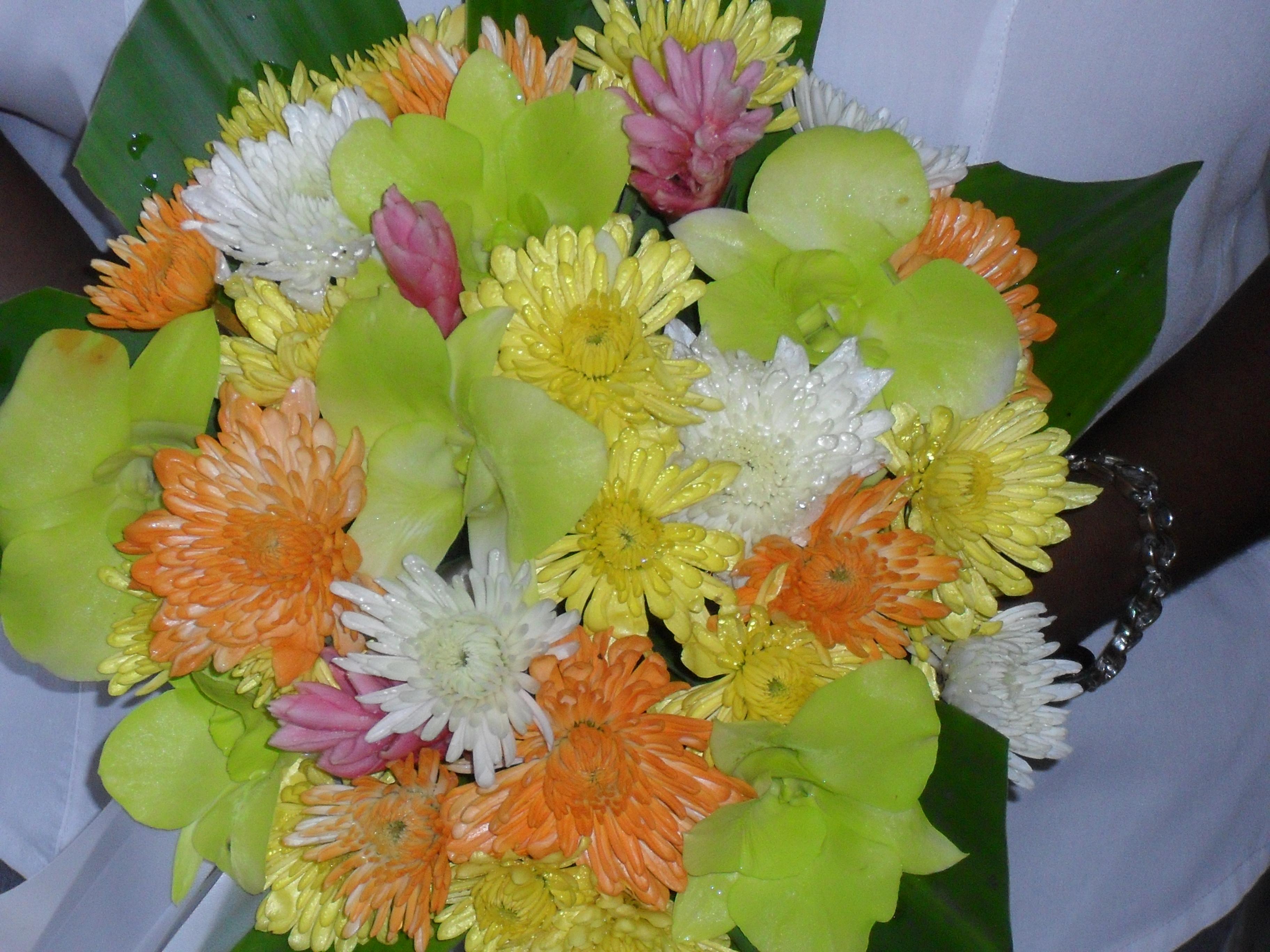 Chyrsanthemums & Orchids