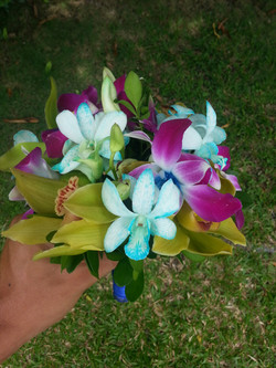 Orchid Mix