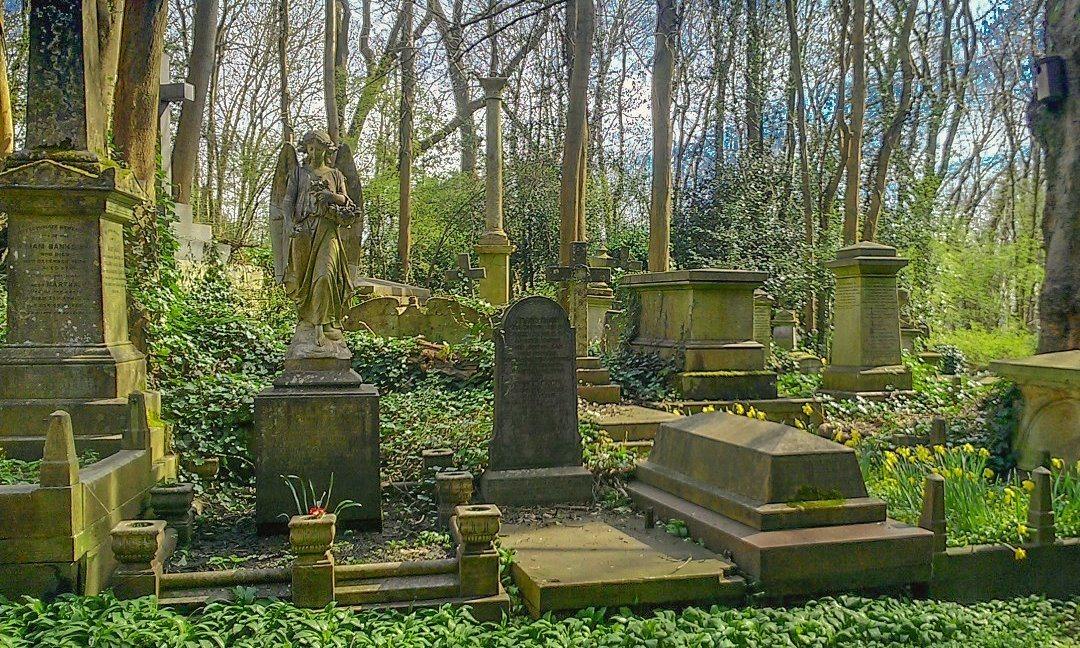 www greatspellscasterali com | Cemetery Voodoo Spells