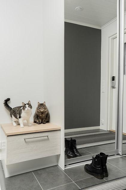 eteisen-peilikaapit.jpg