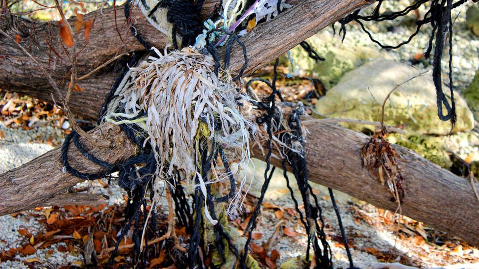 15_Web of Plastic Lobster Lines and Broken Slats.