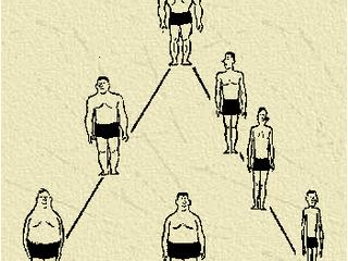Vilken kroppstyp är du? Del 1