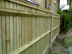 featheredge fence back side