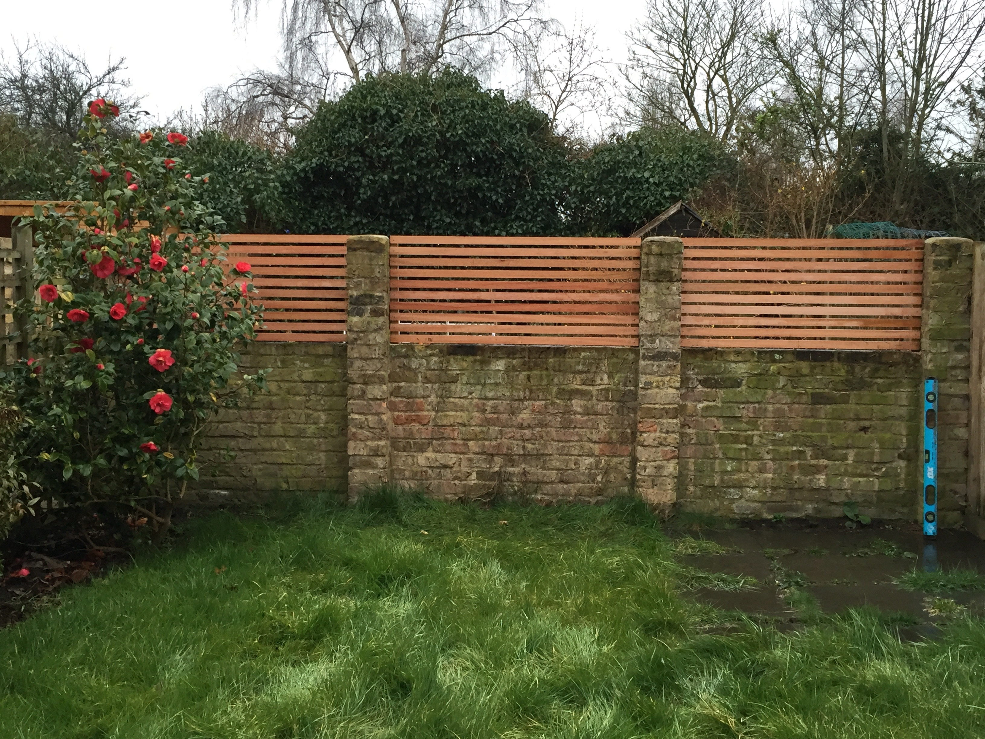 Maranti hard wood trellis on the wall.