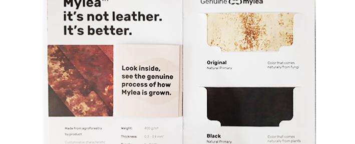 Mylea Sample Kit