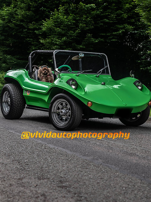 Manta Ray Beach Buggy front three quarter Poster Dogs