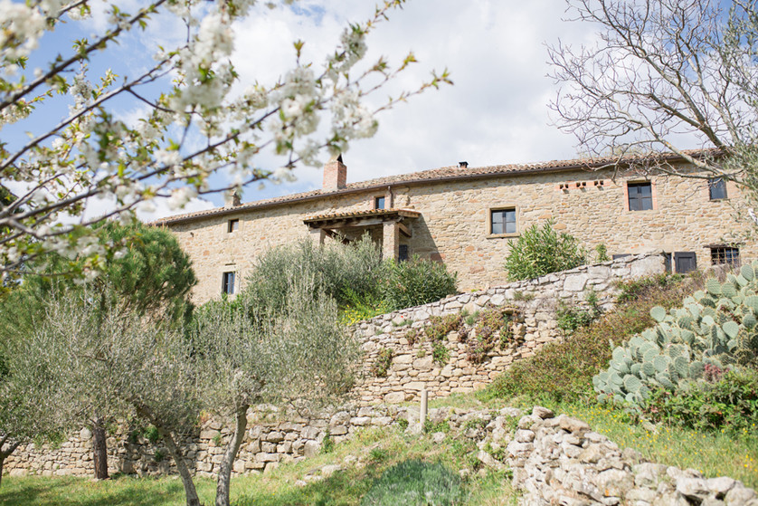 oliveterrace in front of the villa (8).j