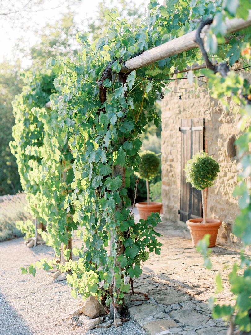 Garden Suite pergola.jpg