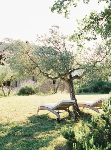 garden behind the villa.jpg