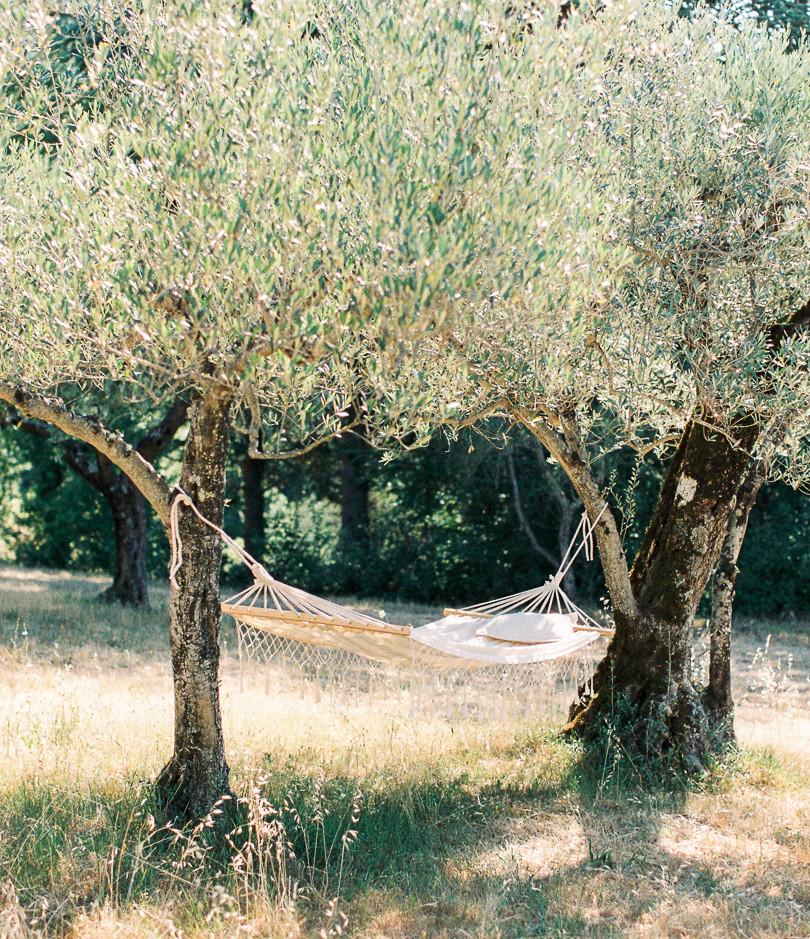 Olivegarden Tuscany.jpg