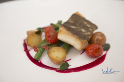 Baffin Bay seared Turbot, BC greens and