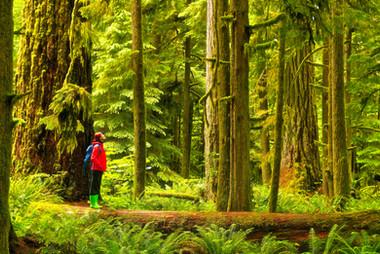 West Coast Vancouver Island-_SWM8890Jun