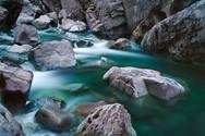 Harris Creek II - West Coast Vancouver I