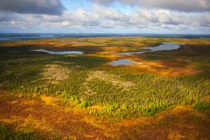 Sep 01 2019 Arctic Haven 0018.jpg