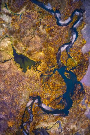 Colorado Fall Colors 6.jpg