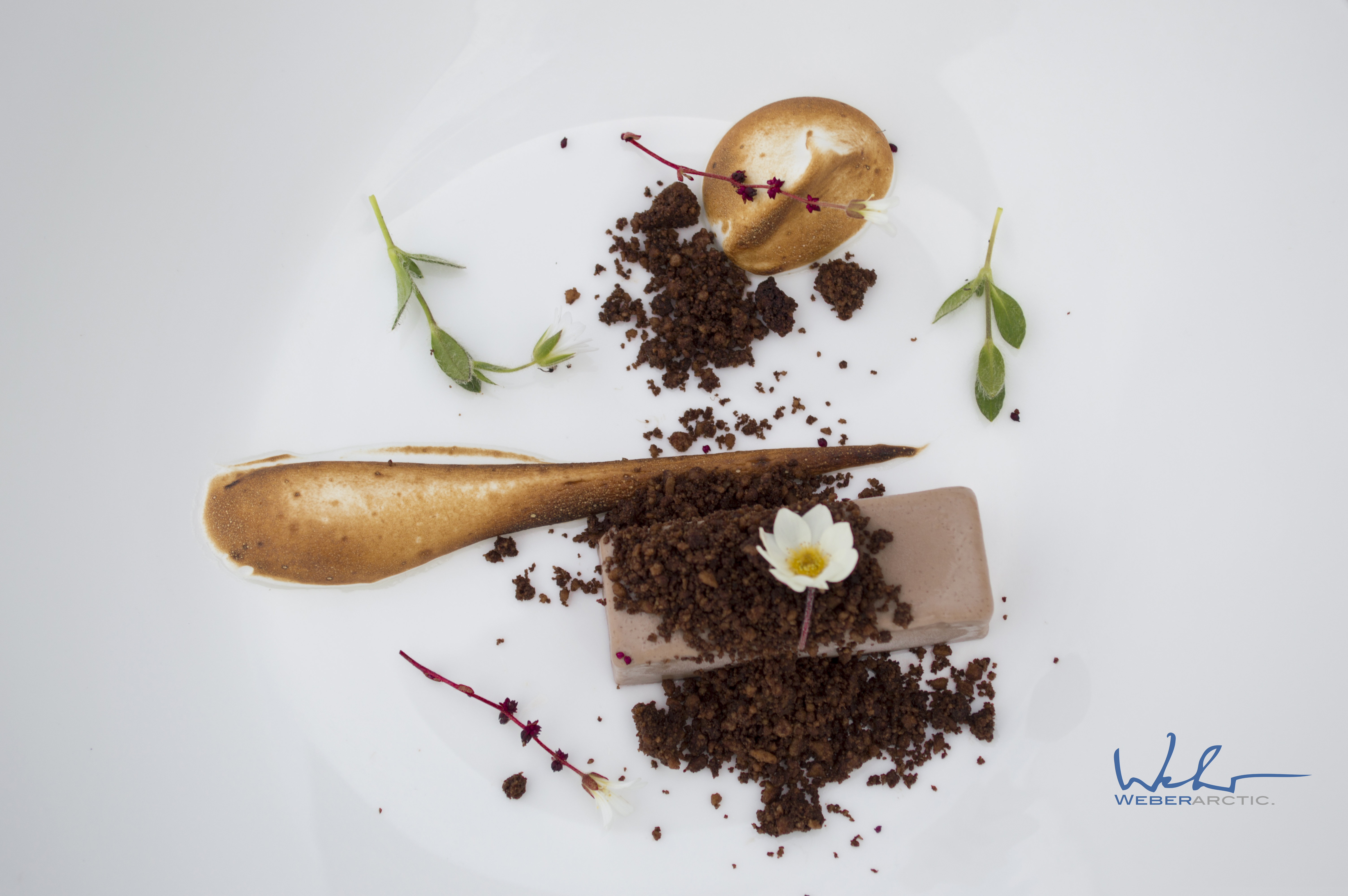 Chocolate_crémeux_dessert