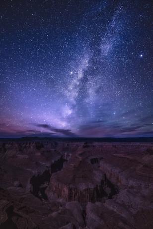 Cosmic Introspections