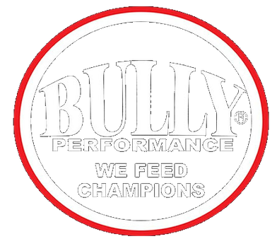 Bully Performance