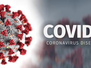 Lavanta; Koranavirüs'e ( Covid 19 ) karşı etkili olabilir mi?