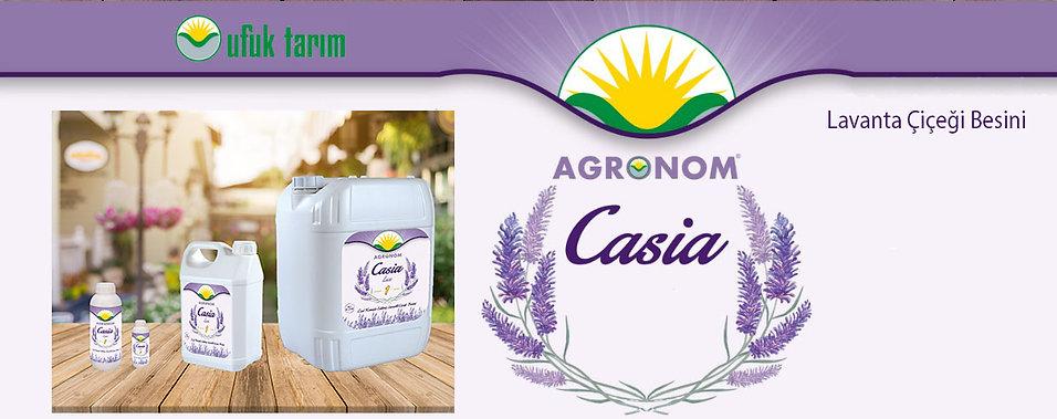 Casia_ilk_SayfaÜst.jpg