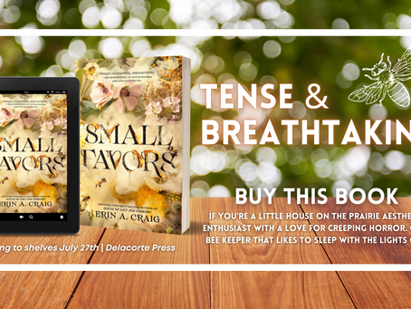 REVIEW: Small Favors by Erin Craig