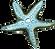 Maynard: Starfish
