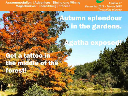 Mountain Getaways Front Page