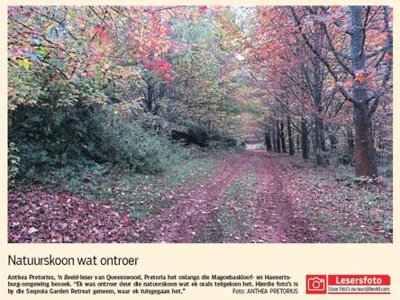 Beeld Newspaper Feature
