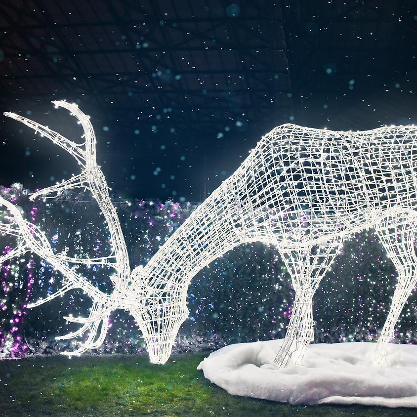 Kimi + Friends: Rhythm and Carols at Enchant Christmas
