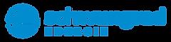 Schwungrad Energie- Member of IESA