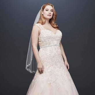 David's Bridal Collection Plus Size Wedding Dresses