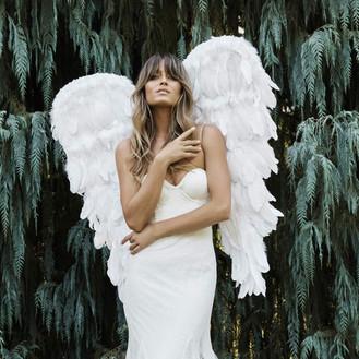 Grace Loves Lace 2021 Elysian Wedding Dresses