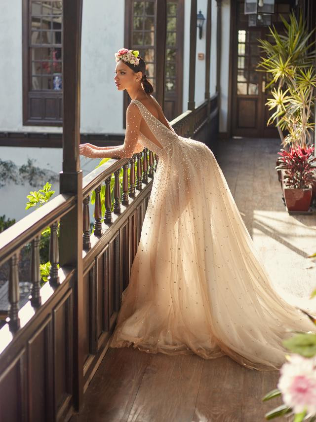 A blush A-line wedding dress, with tulle skirt, crystals and a low back