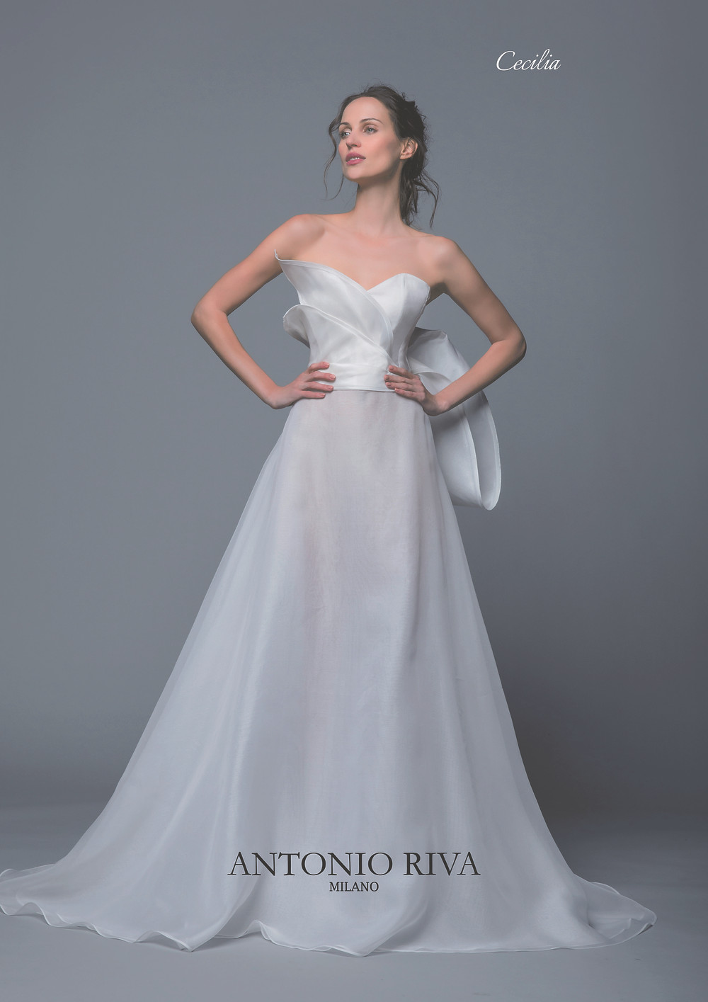 An Antonio Riva 2020 strapless chiffon A-line wedding dress with a bow