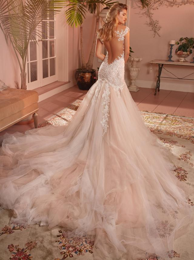 A blush mermaid wedding dress, with low back, tulle skirt and lace