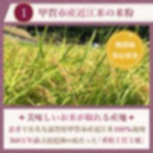 koka_mochi01_03.jpg