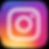 nstagram-logo.png