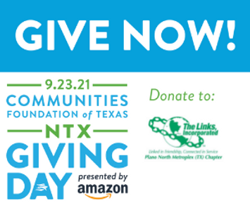 Copy of 300x250 Donate Web Ad (1).png